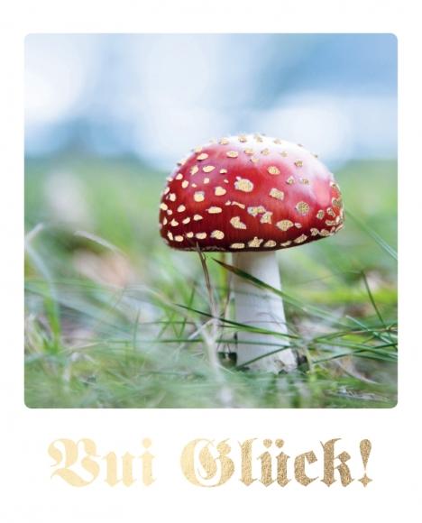 Postkarte: Vui Glück!