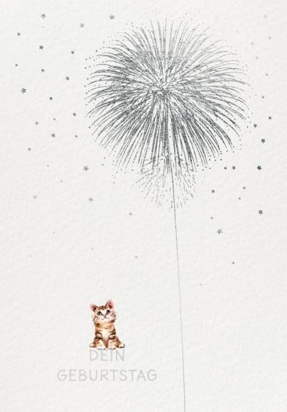 Postkarte: Dein Geburtstag. Feuerwerk.
