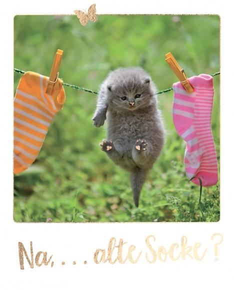 Postkarte: Na, ... alte Socke?