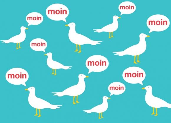Postkarte: Moin - Möwen