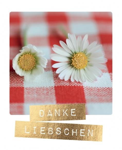 Postkarte: Danke Liebschen
