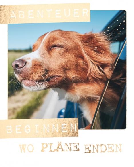 Postkarte: Abenteuer beginnen wo Pläne enden