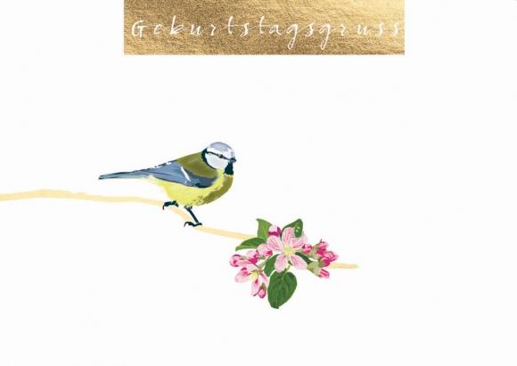 Postkarte: Meise mit Apfelblüten - Geburtstagsgruß