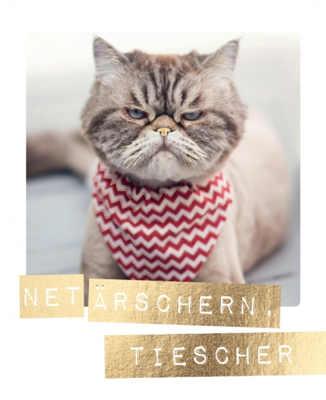 Postkarte: Net ärschern, Tiescher