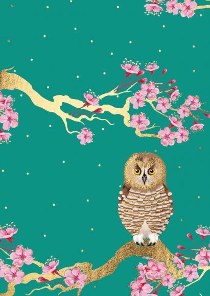 Postkarte: Eule mit Kirschblüten