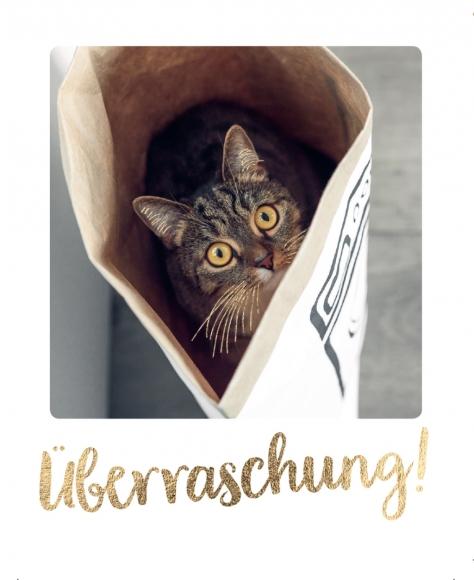 Mini-Postkarte: Überraschung!