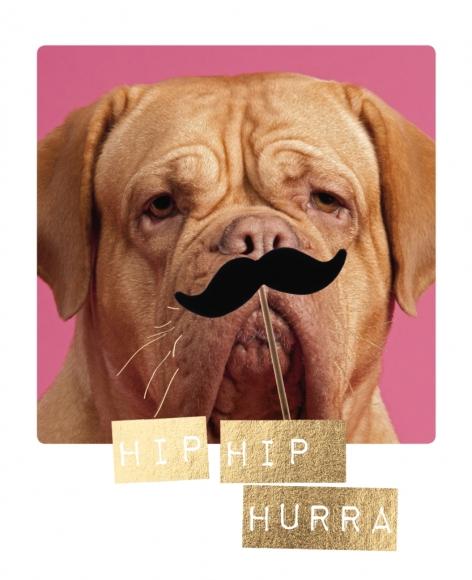 Postkarte: Hip Hip Hurra
