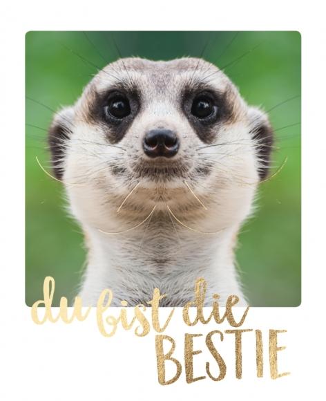 Postkarte: Du bist die Bestie