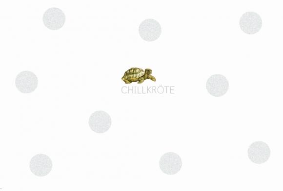 Postkarte: Chillkröte