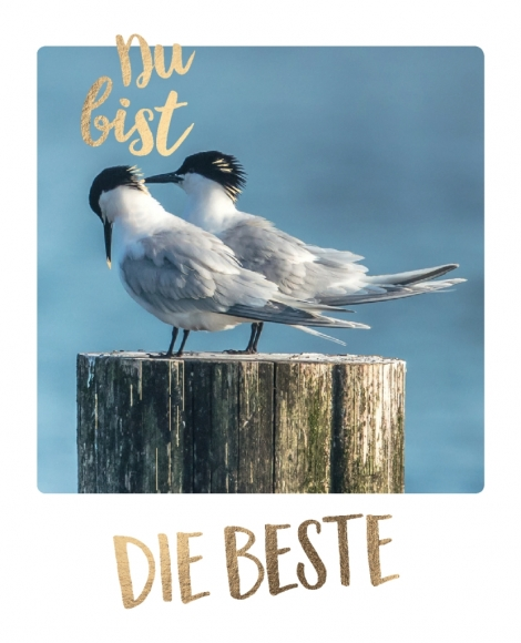 Postkarte: Du bist die Beste