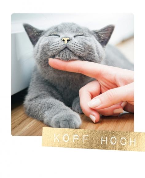 Postkarte: Kopf hoch