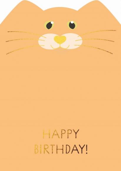Postkarte: Happy Birthday - Katze