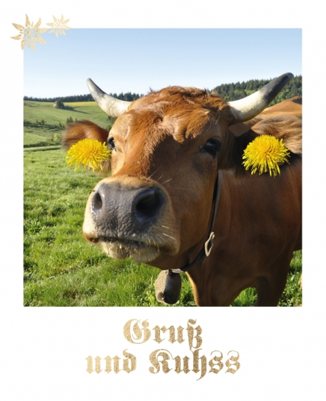 Postkarte: Gruß und Kuhss