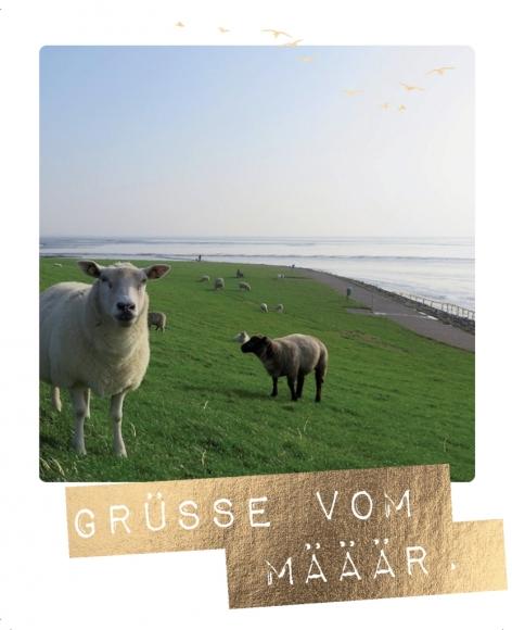 Postkarte: Grüße vom Määär