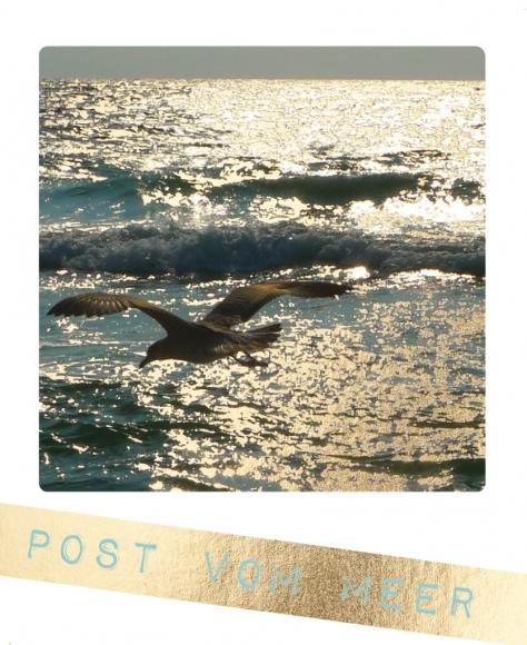 Postkarte: Post vom Meer