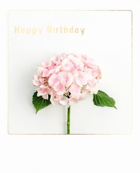 Doppelkarte: Happy Birthday - Hortensie