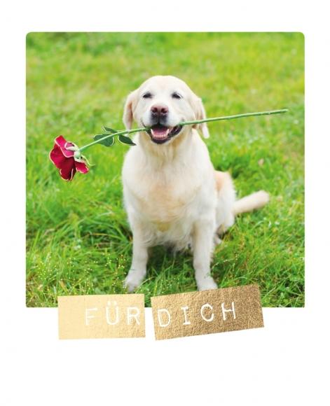 Postkarte: Für Dich