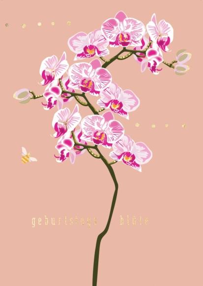 Postkarte: Orchidee Geburtstagsblüte