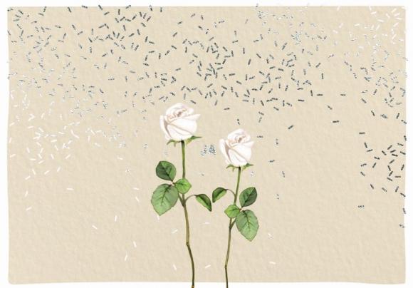 Doppelkarte: Alles Liebe - Blumenballons
