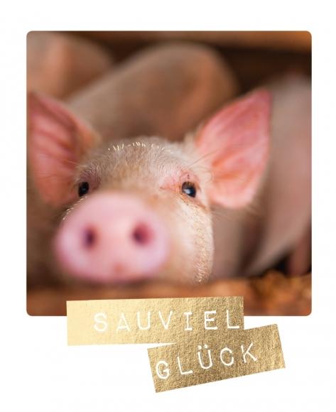 Postkarte: Sauviel Glück
