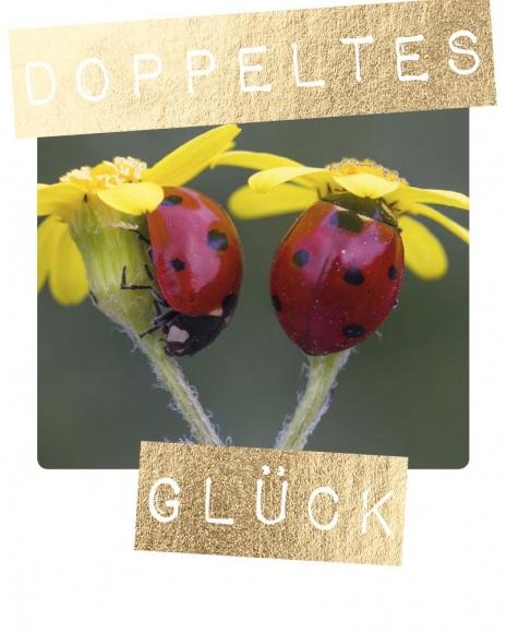 Mini-Postkarte: Doppeltes Glück