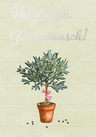 Doppelkarte: Herzlichen Glückwunsch - Olivenbaum