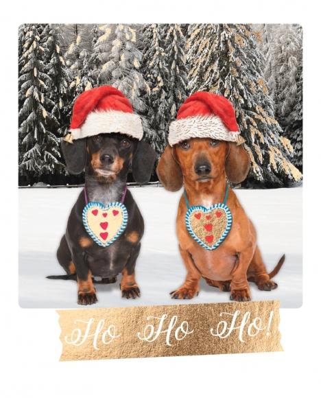 Postkarte: Ho-Ho-Ho!