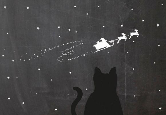 Doppelkarte: Katze und Rudolf mit Schlitten