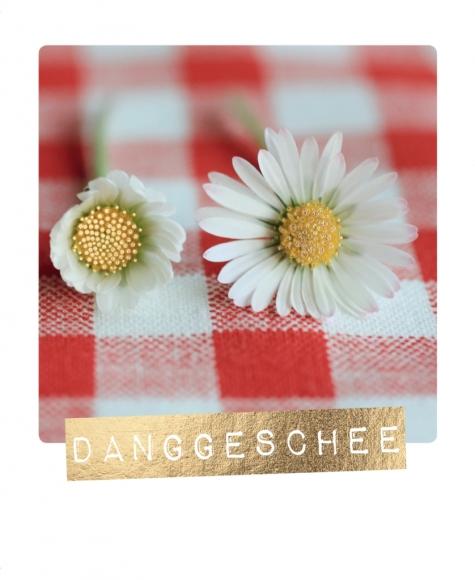 Postkarte: Danggeschee