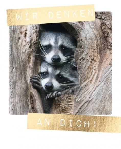 Postkarte: Wir denken an Dich!