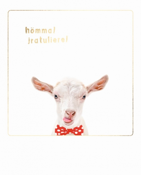 Postkarte: Hömma! Jratuliere! - Hennes mit Fliege.