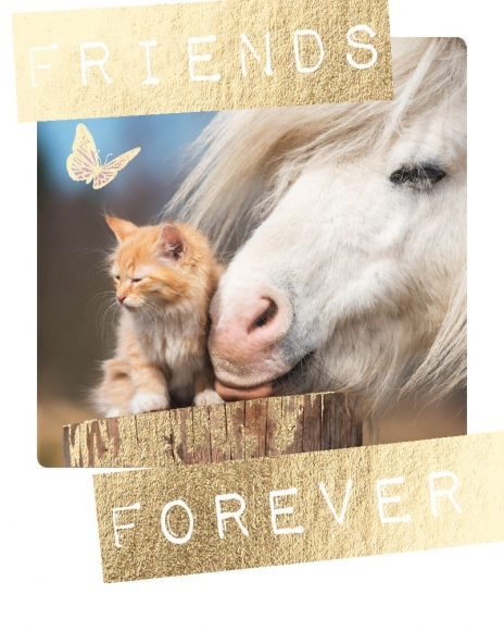 Mini-Postkarte: Friends forever