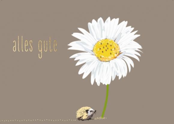 Postkarte: Igel, Margerite - Alles Gute