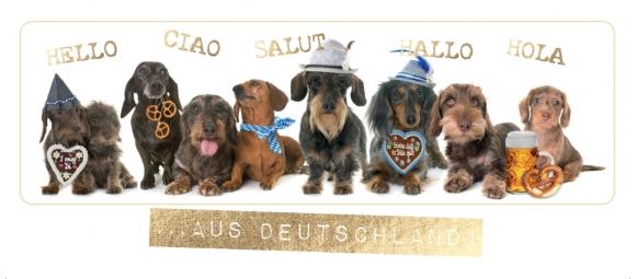 Postkarte: Dackelparade ... aus Deutschland