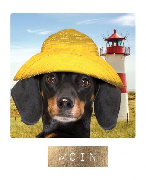 Postkarte: Moin