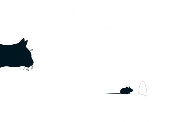 Postkarte: Katz & Maus