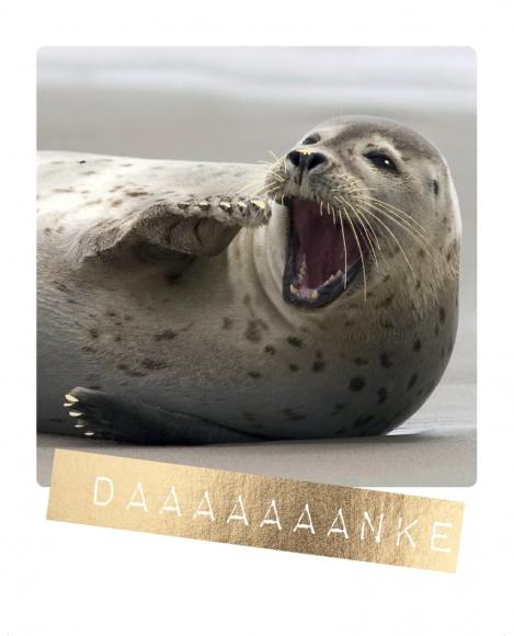Postkarte: Daaaaaaanke