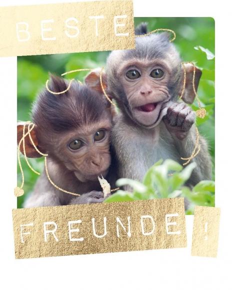 Mini-Postkarte: Beste Freunde!