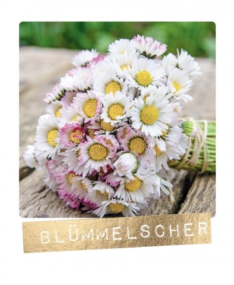 Postkarte: Blümelscher