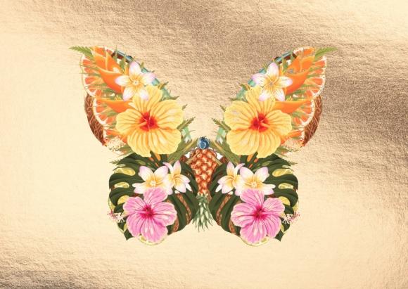 Postkarte: Schmetterling aus Früchten