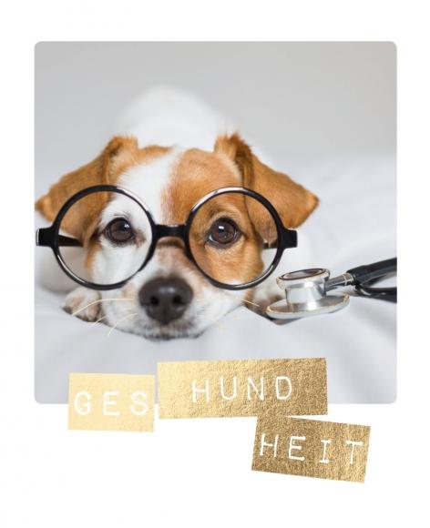 Postkarte: Ges-hund-heit