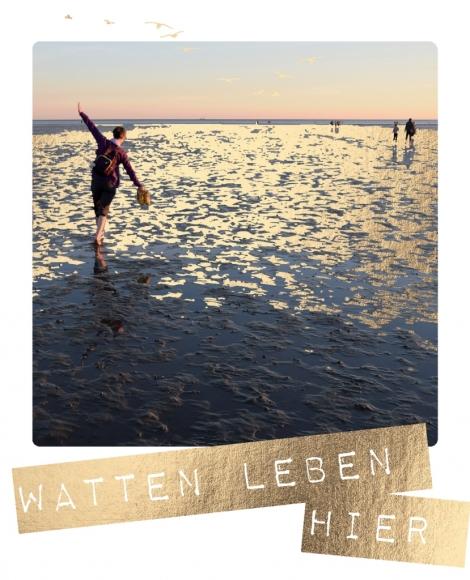 Postkarte: Watten Leben hier