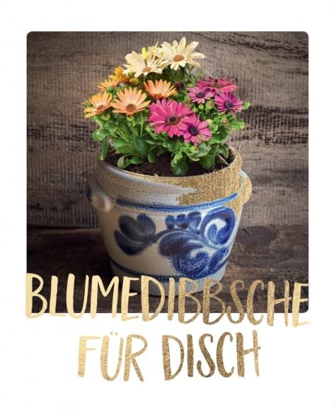 Postkarte: Blumendibbsche für Disch