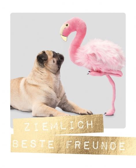 Postkarte: Ziemlich beste Freunde
