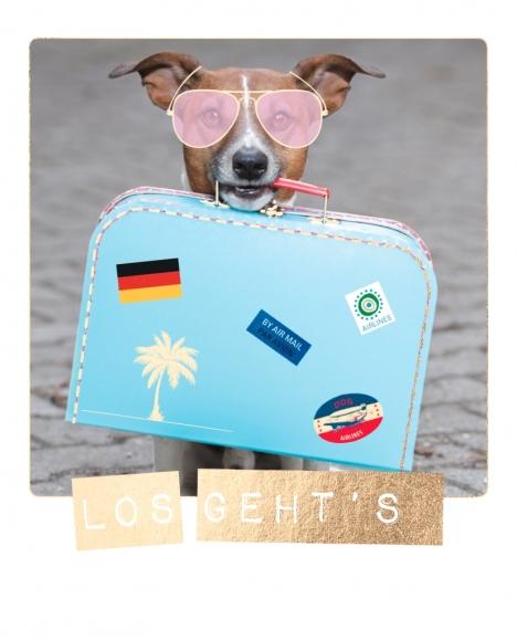 Postkarte: Los geht's