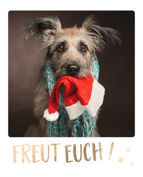 Postkarte: Freut euch!